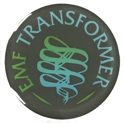 eti-transformer-single.jpg